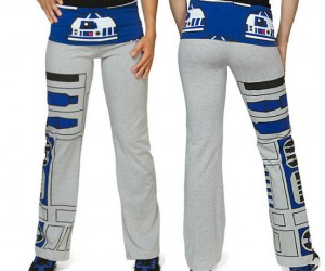 sherwin williams painters pants